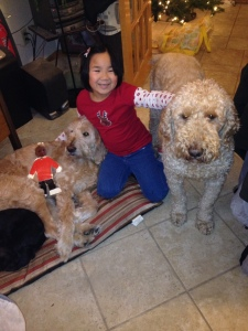 julia dogs